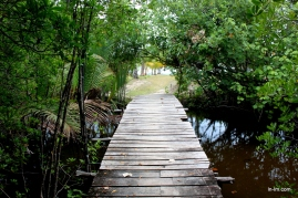 This little wooden bridge had to be crossed to get to the beach from our hut.